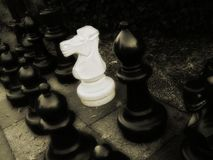 Foreigner. Photo of chess royalty free stock image