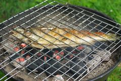 Forel en barbecque stock afbeeldingen