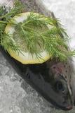 Forel met plak van citroen royalty-vrije stock fotografie