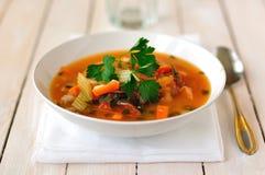 Forel, Tomaat en Chili Soup stock foto's