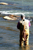 Forelle-Fischen   stockbild