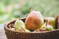 Forelle Pears Arkivbilder