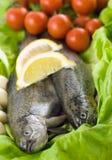 Forelle zwei mit Zitrone und Knoblauch Stockfoto