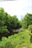 Forellen-Fluss-Strom, Franklin County, Malone, New York, Vereinigte Staaten lizenzfreies stockbild