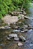 Forellen-Fluss-Strom, Franklin County, Malone, New York, Vereinigte Staaten stockfotos