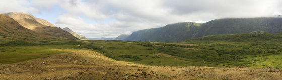 ForellRiver Valley panorama Royaltyfria Bilder