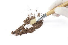 Forensic analysis - a forensics lab technician examines murder scene for any other residue or evidence to be used in a court case. Brush is being used Royalty Free Stock Images