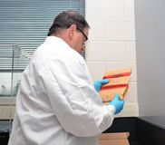 Forensic Investigator Stock Photography