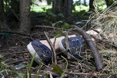 Forensics and investigation girl legs in the forest Stock Images