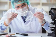 The forensics investigator working in lab on crime evidence. Forensics investigator working in lab on crime evidence stock photography