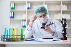The forensics investigator working in lab on crime evidence. Forensics investigator working in lab on crime evidence stock photo