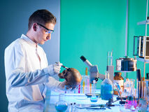 Forensics scientist Royalty Free Stock Photo
