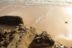 Foreshore Royalty Free Stock Photography