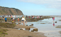 Foreshore at Robin Hood's Bay. Royalty Free Stock Photo