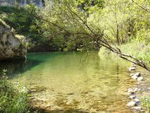 Foreshortening del fiume di Anapo fotografia stock