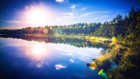 Forest湖和太阳 图库摄影