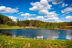 Forest湖和蓝天 库存照片
