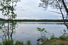 Forest湖在讨厌的多云夏日 图库摄影