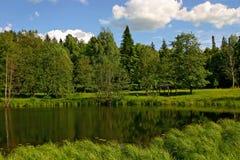 Forest湖有rflection的和有cloudscape的 库存图片
