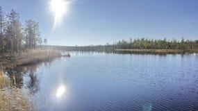 Forest湖 太阳的反射在水的 免版税库存图片