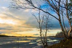 Forest湖 日落的春天湖 免版税图库摄影