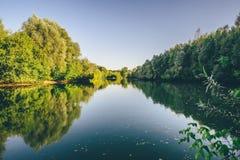 Forest蓝色湖 免版税库存照片