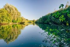 Forest蓝色湖 免版税库存图片