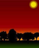 Forest. Illustration of forest at sunrise/set Royalty Free Illustration
