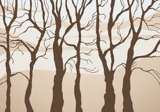 Forest. Stylized forest silhouette  illustration Stock Photos
