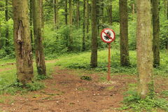 Forest. Interdiction sign : No fire Royalty Free Stock Photography