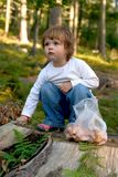 In the forest. Little child expoloring the forest Royalty Free Stock Photos