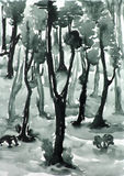 Forest. In monochrome, scan drawing on paper stock illustration