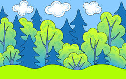 Forest. Forest in the summer. Vector illustration Stock Photography