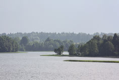 Forest. A distant forest behind a lake Stock Photo