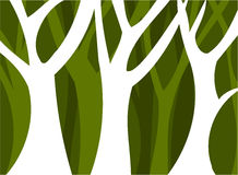 Forest. Abstract forest full of trees. Vector illustration Royalty Free Stock Image