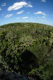 Forest from above. A view of a forest seen from a wooden tower, fish eye lens distortion Royalty Free Stock Photos
