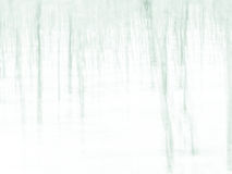 Forest - abstract impressionist blurry background Stock Images