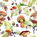 Forest acorn pattern in a hand drawn watercolor style. Forest acorn pattern pattern in a hand drawn watercolor style. Aquarelle acorn for background, texture Stock Images