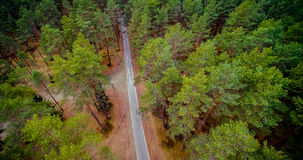 Forest aerial view Stock Photos