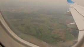 Forest Through The Airplane Window stock videobeelden