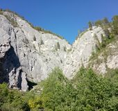 Forest in Altai mountains, Russian Federation, Altai. View on a forest and rocks in Altai mountains, Russian Federation, Altai royalty free stock photos