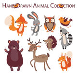 Forest animal Royalty Free Stock Images
