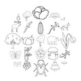 Forest animal icons set, outline style. Forest animal icons set. Outline set of 25 forest animal vector icons for web isolated on white background royalty free illustration