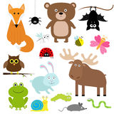 Forest animal insect set. Bear, hare, fox, moose, owl, Stock Image