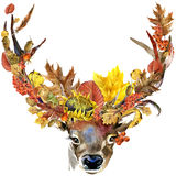 Forest animal roe deer Autumn nature colorful leaves background , fruit, berries, mushrooms, yellow leaves, rose hips on black bac. Kground. watercolor stock illustration