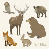 Forest animal set Royalty Free Stock Image