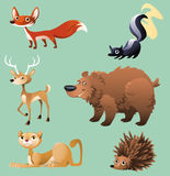 Forest animals 2. Cartoon of Forest animals Royalty Free Stock Photos