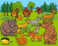 Forest animals cartoon illustration Royalty Free Stock Photography