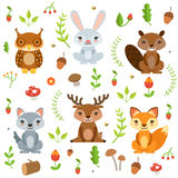 Forest animals in cartoon style. Vector characters set isolate on white. Character forest animal, illustration of cartoon animals Stock Photography