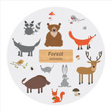 Forest animals in cartoon style on white background. Forest anim Stock Photo